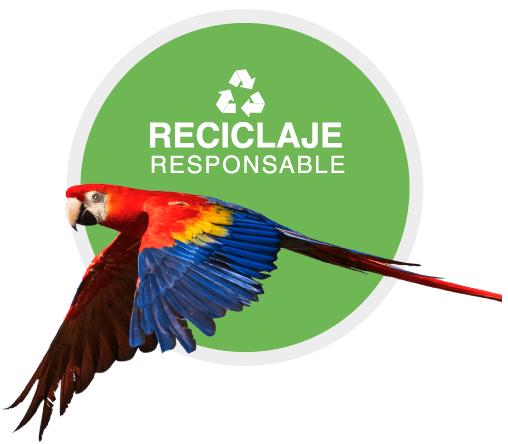 https://tsj.com.co/wp-content/uploads/2020/02/reciclaje-responsable.png